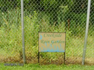 The Creekside Rain Garden captures and treats rainwater from the rear driveway area.