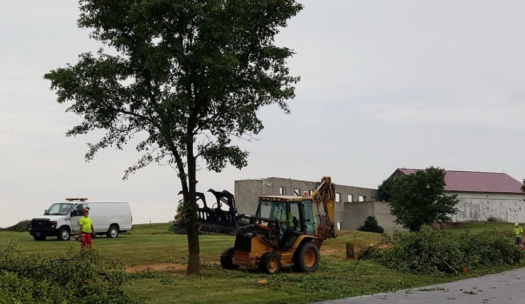 Yellow backhoe with a claw attatchment grabbing one of the trees at the golf course property.