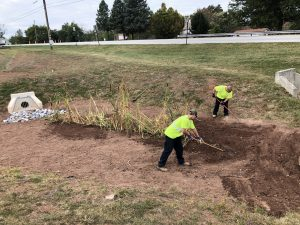 Two Township workers wearing safety green shirts and blue jeans planting cat tails inside of a rain garden.